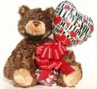 "Timber, I Love You Bear 18"" by Gund"