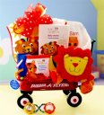 Baby Einstein Wild Wilderness - Baby Gift Basket